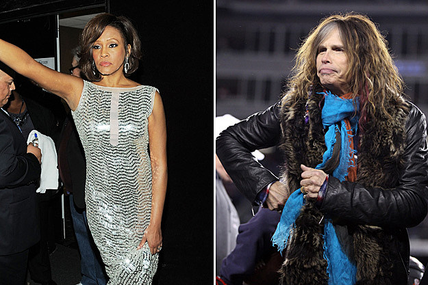 Whitney Houston / Steven Tyler