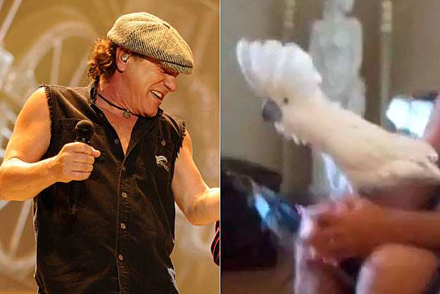 Brian Johnson, Tonto