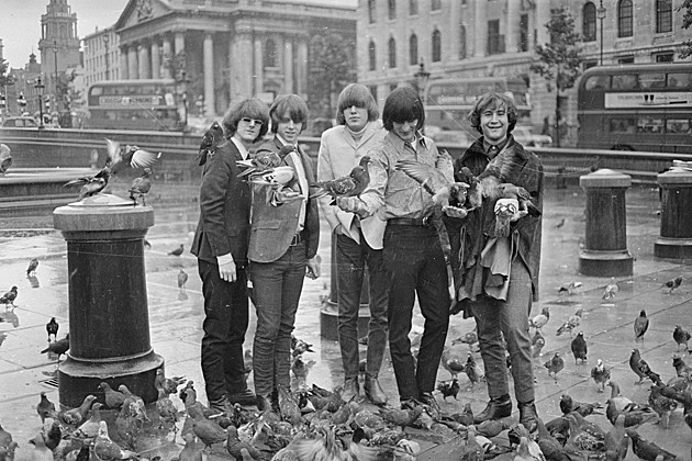 The Byrds, Victor Blackman, Hulton Archive