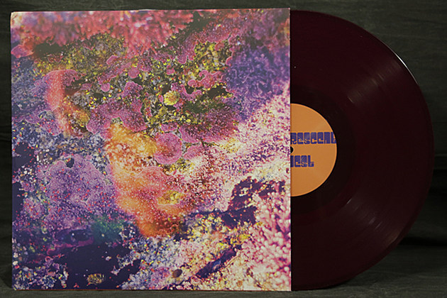 Chris Robinson Brotherhood - 'Phosphorescent Harvest' - Vinyl