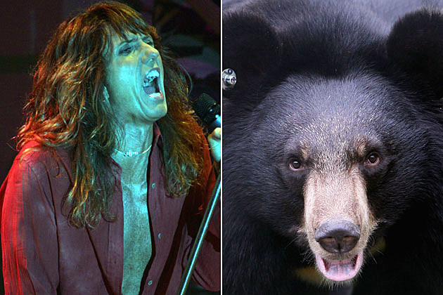 David Coverdale and Bear