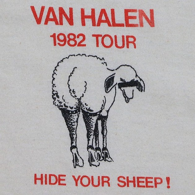 Hide Your Sheep