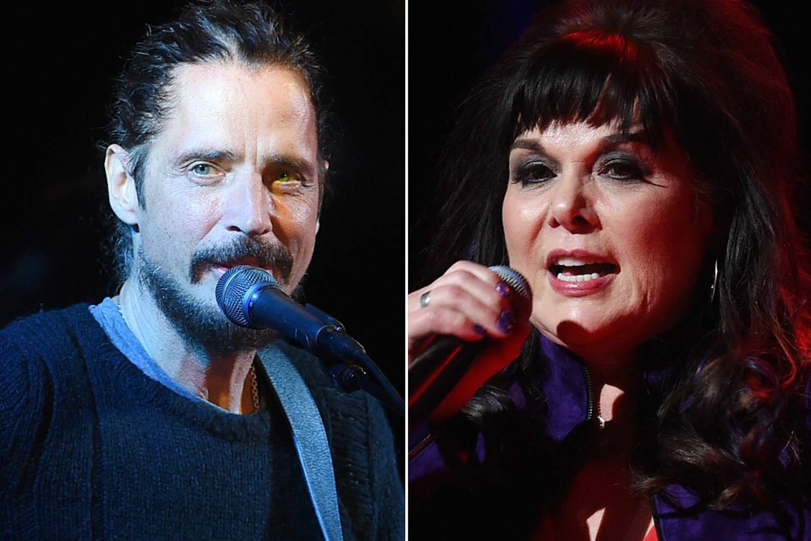 Ann Wilson Says She Wasn't Surprised by Chris Cornell's Death