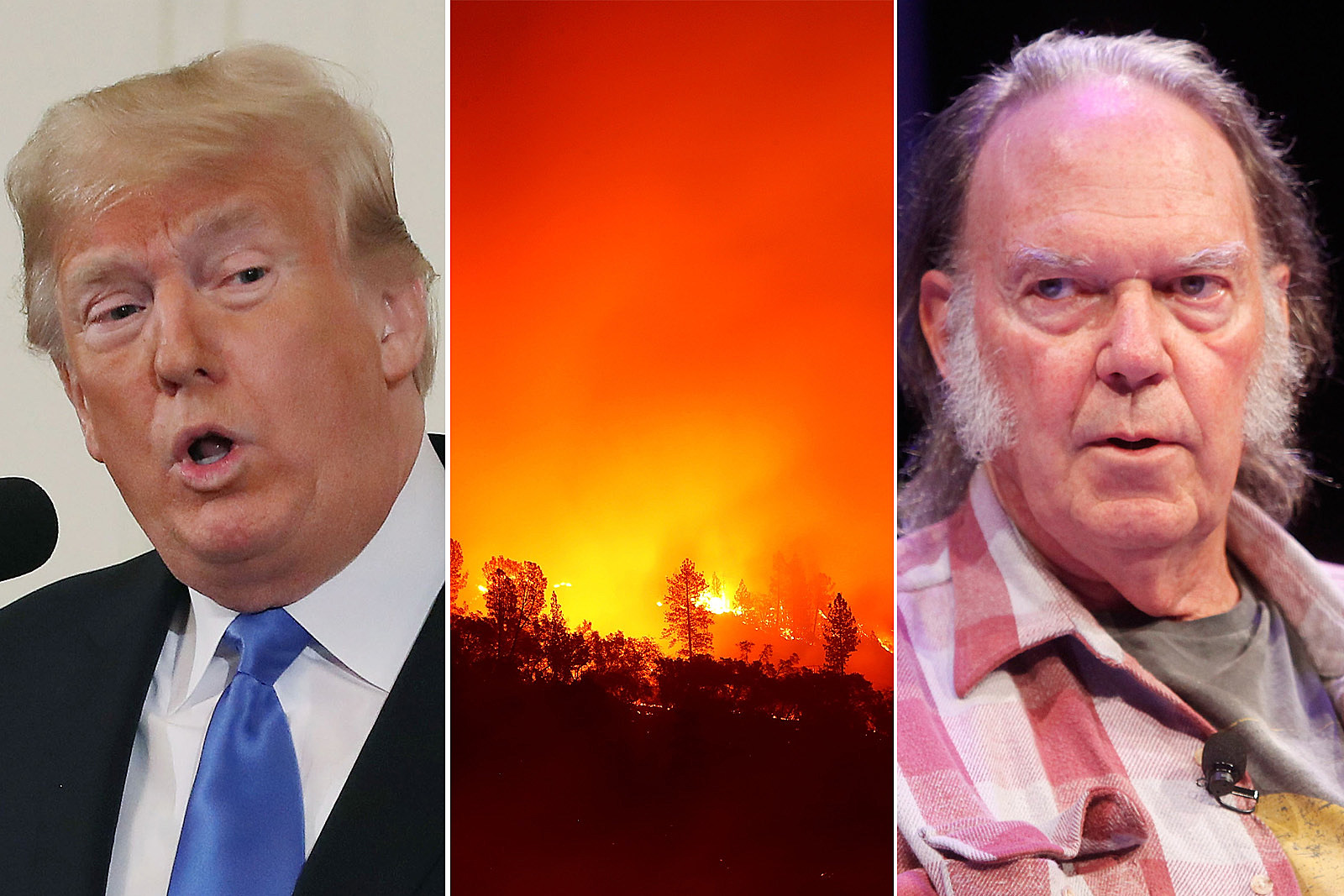 Neil Young Loses Home in California Fires, Then Attacks Donald Trump
